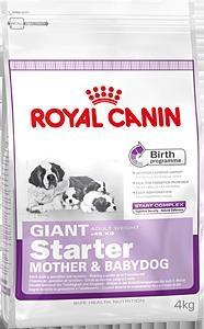 Royal Canin (Роял Канин) Гигант Стартер